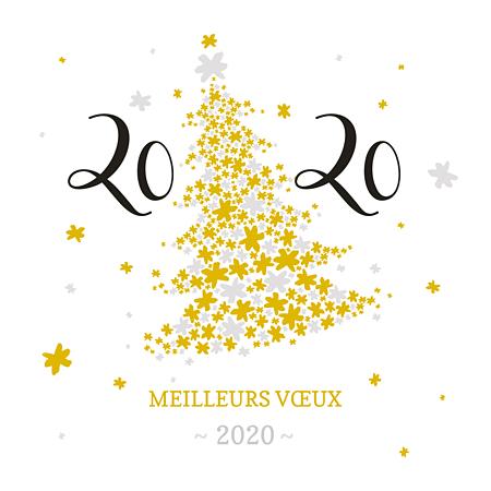 Le président et toute son équipe vous présentent nos meilleurs voeux pour l'année 2020